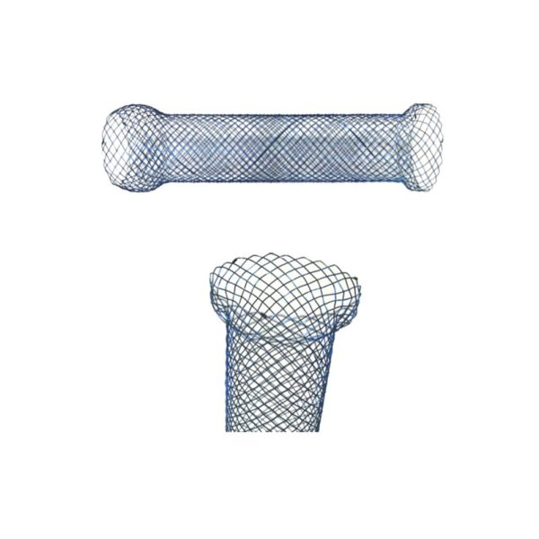 Fully Covered Oesophageal Stent